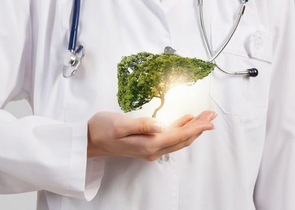 ulei de masline extravirgin beneficii asupra sanatatii in protejarea ficatului